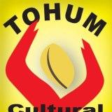 londra tohum